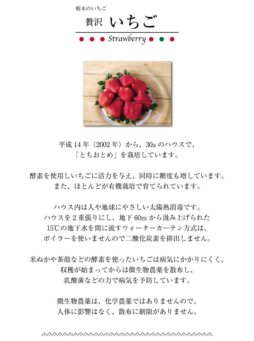 strawberry_page2